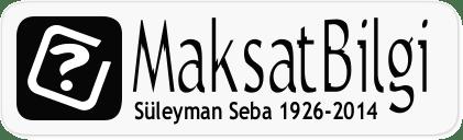 Bilgi Logoları