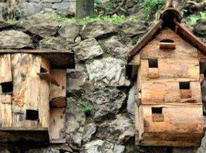 kus evi ahsap mimari