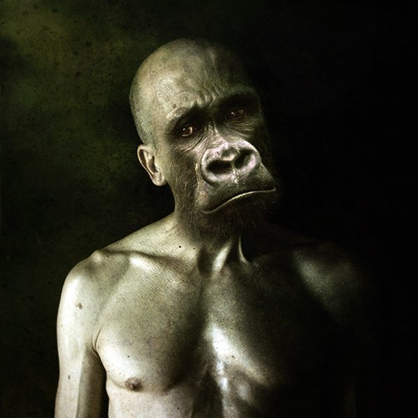 maymun-insan