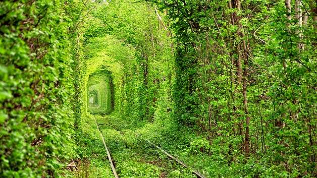 Ask-Tuneli