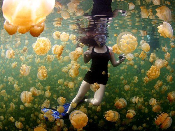 underwater-girl-jellyfish_89910_600x450
