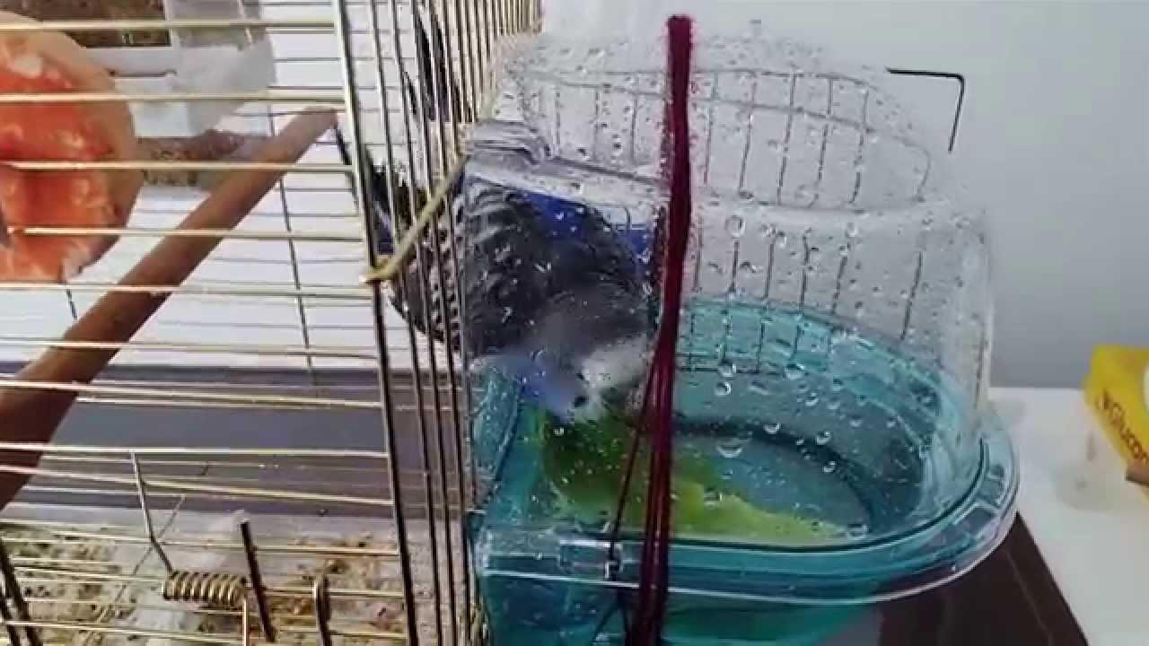 -banyo2-