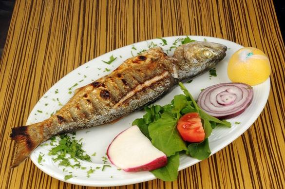 levrek Ekim Ayında Hangi Balık Çeşidini Yemeliyiz!