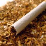 Nikotin Nedir ? , Vücudumuzdaki Nikotin Nasıl Temizlenir ?, Nikotini Temizleyen Besinler Nelerdir ?