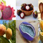 Kolay Kolay Bulamayacağınız Dünyanın 10 İlginç Meyveleri