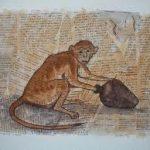 Maymun Tuzağı Nedir?